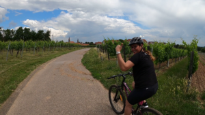 Short holiday Germany - bike tour in the Palatinate
